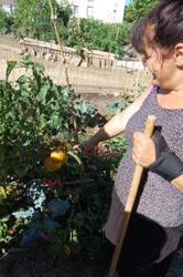 jardin_photo10