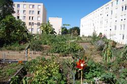 jardin_photo2